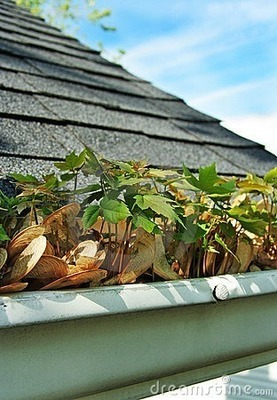 Gutter Cleaning - per hour