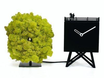Progetti BIRDWATCHING |orologio|