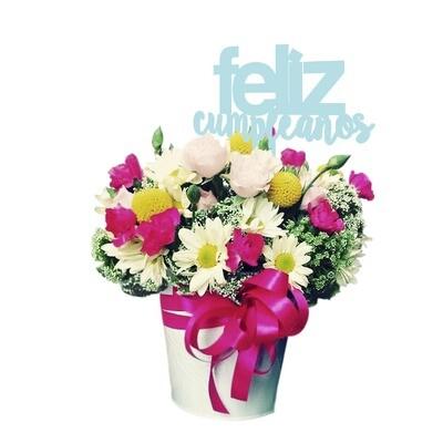 Sorpresa Floral