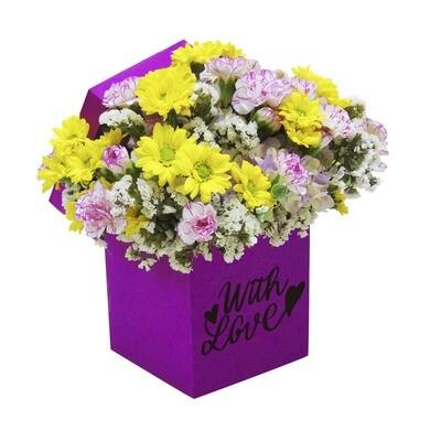 Caja daisy