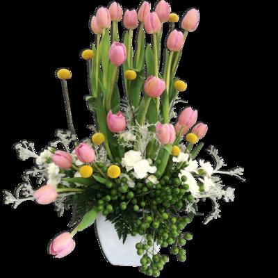 Tulipanes soleados