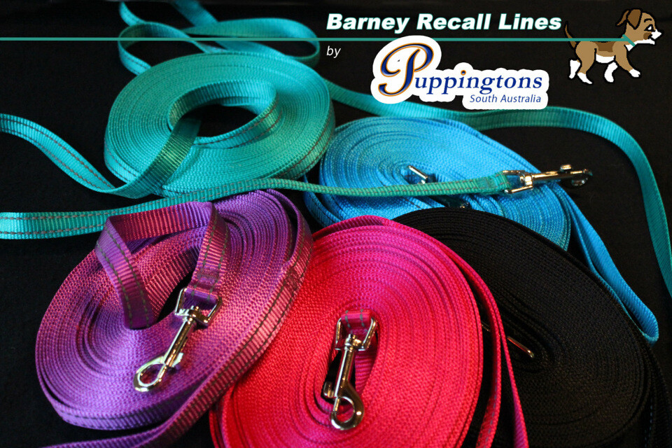 Barney Recall Lines. (10 metres)