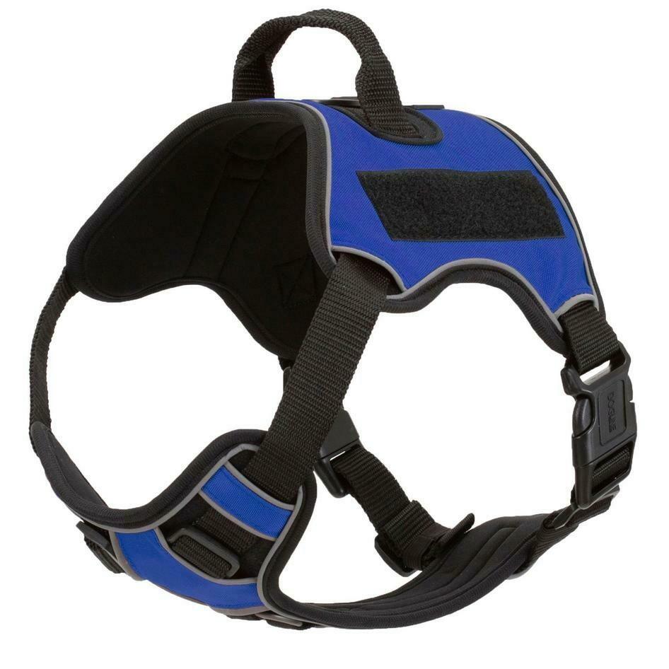 Quest Multi-Purpose Harness. Blue