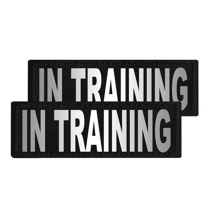 """In Training"" Reflective Patch"