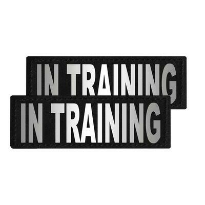"""""""In Training"""" Reflective Patch"""