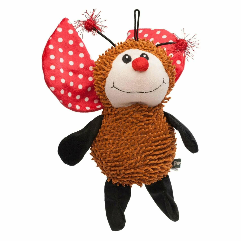 Luis Noodle Ladybug.