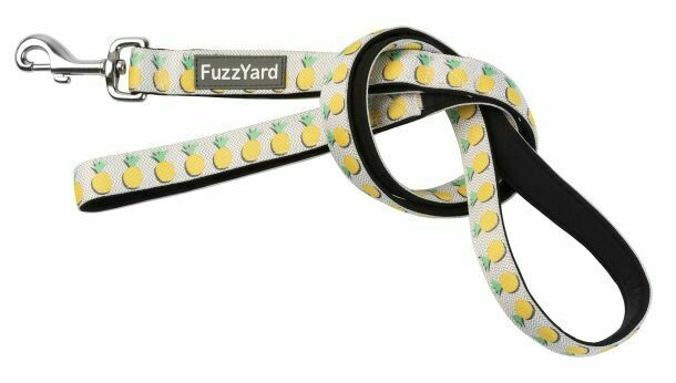 FuzzYard Pina Colada Lead