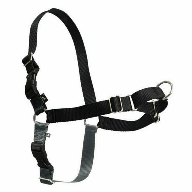 Gentle Leader Easy Walking Harness - Black. Medium-Large Size.
