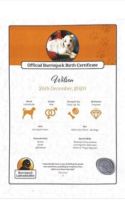 Burrinjuck Puppy Adoption Certificate