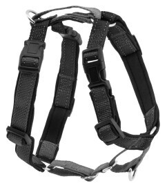 PetSafe® 3 in 1 Harness and Car Restraint, Black