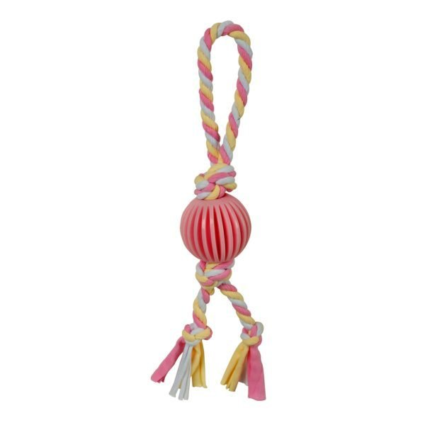 Puppy's 1st – Pink Ball with Rope