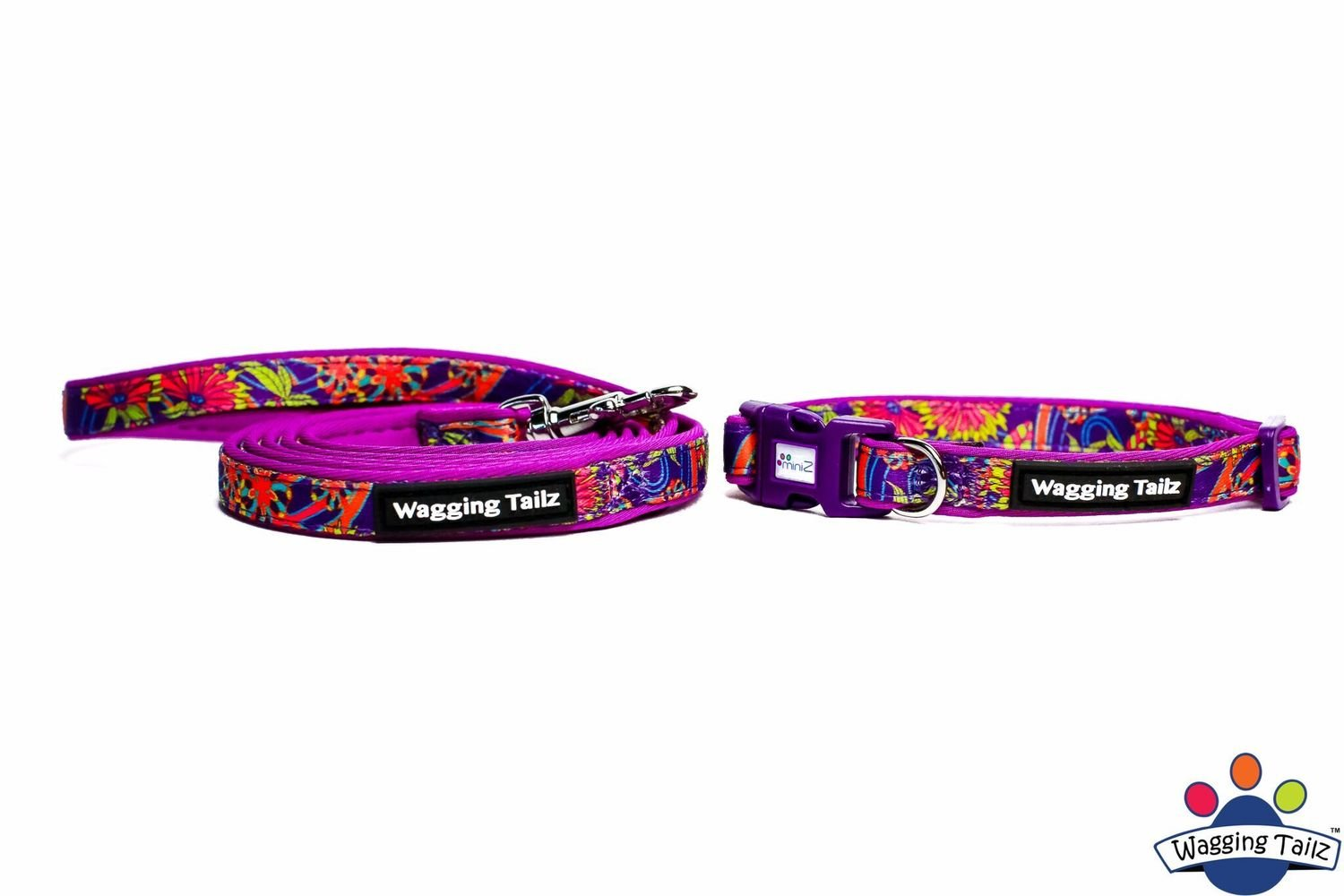 Lavender Collar and Lead