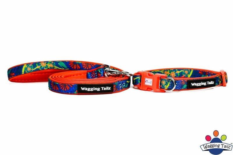 Poppy Orange Collar and Lead