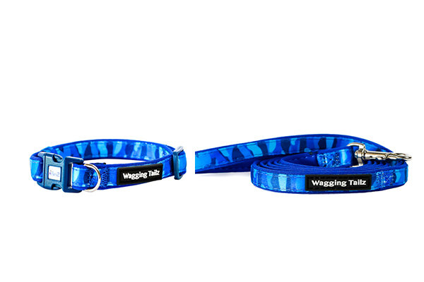 Blue Cameo Collar and Lead