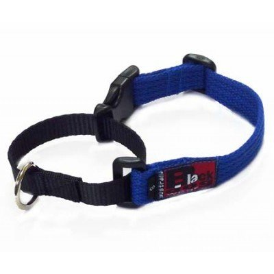 BlackDog Training Collar (Medium Size)