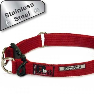 Standard Collar (Super-strong) - Stainless Steel. Adjustable