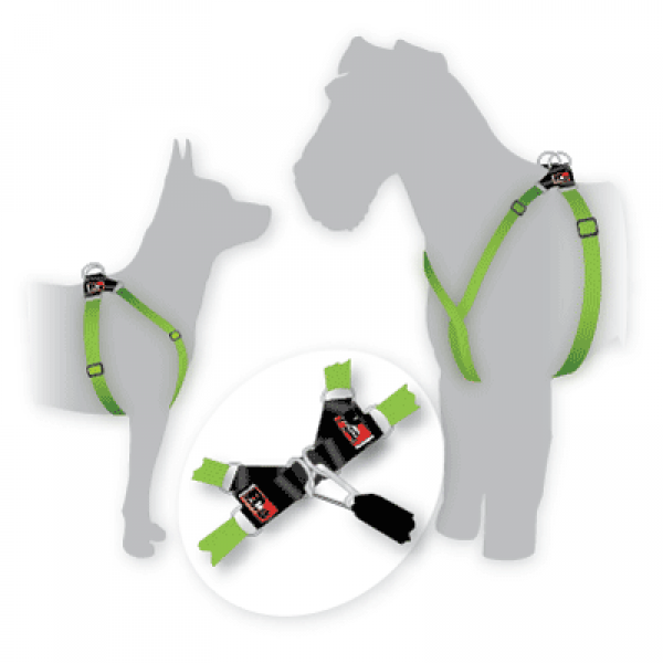 BlackDog Dog Harness - Small - GREEN