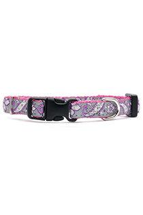 LS Fashion Paisley Pink Fashion Puppy Collar