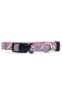 LS Fashion Paisley Pink Fashion Puppy Collar