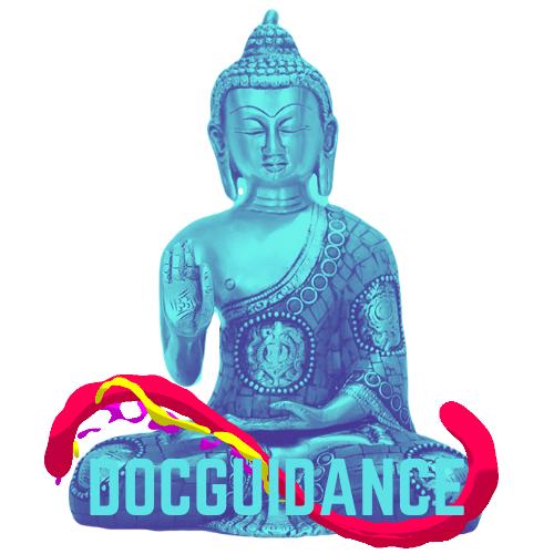 Docguidance.com