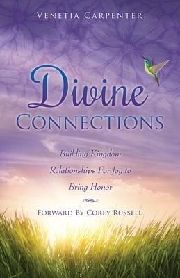 Divine Connections (Paperback)