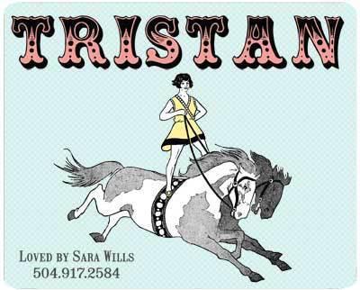 Custom Circus Horse Stall Name Plate