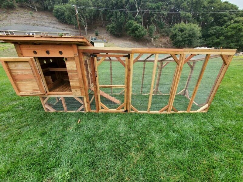 Raised Durango Chicken Coop