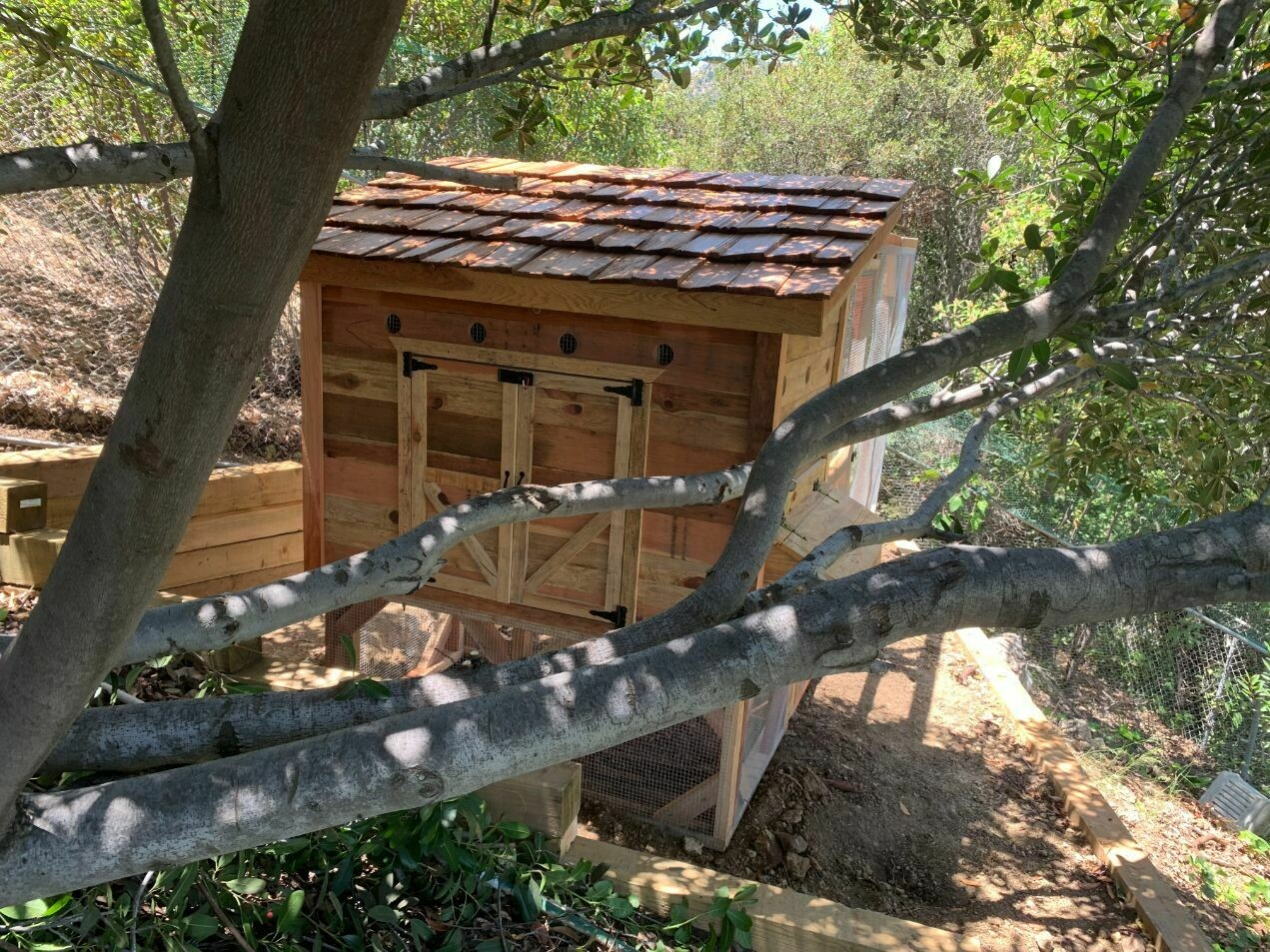 Weathertop Chicken Coop (Small - 3ft x5ft)