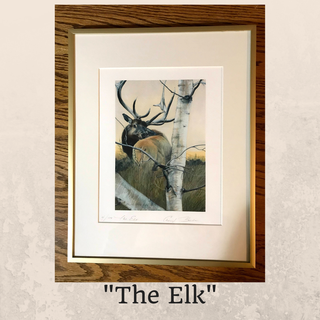 The Elk Framed 10 x 8