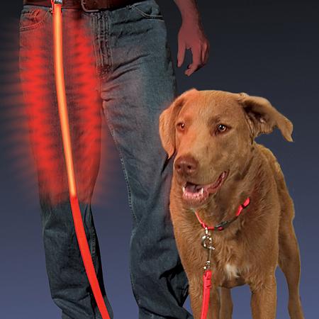 Laisse pour chien avec D.E.L. de Nite Ize