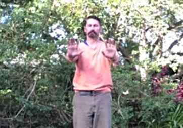ZhiNeng QiGong Level 1 - Lift Qi Up, Pour Qi Down