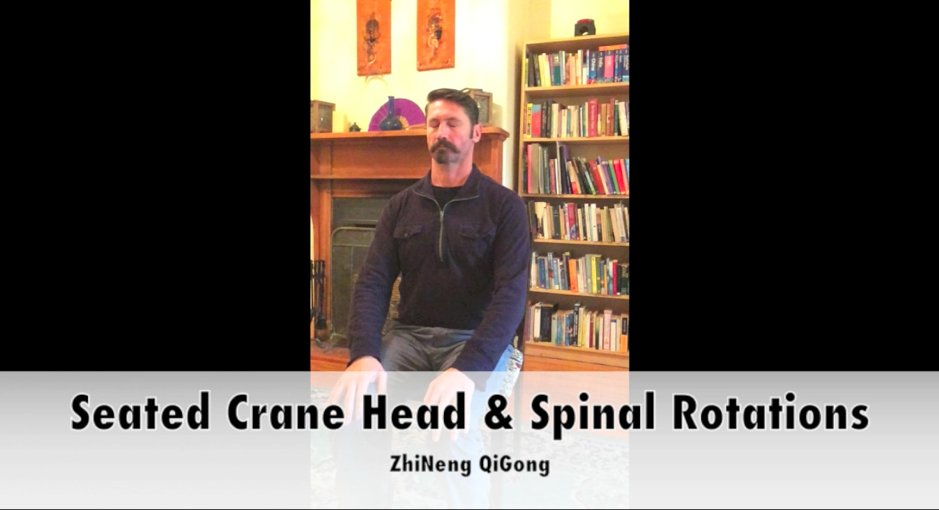 Seated Crane Head & Spinal Rotations
