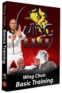 Wing Chun Basic Training