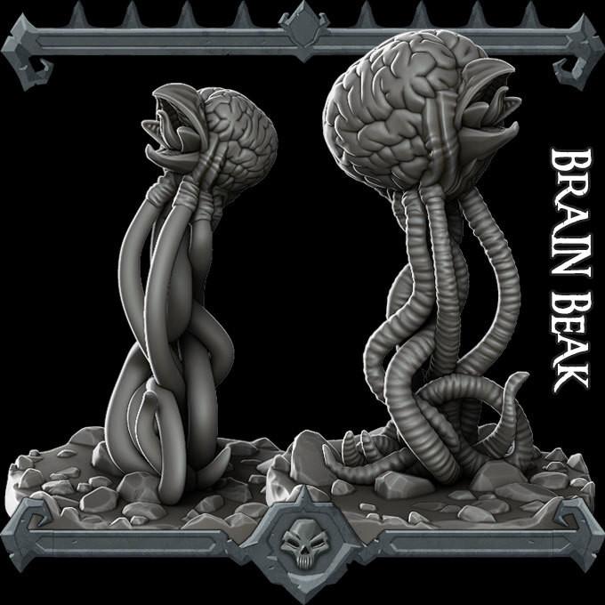 Brain Beak
