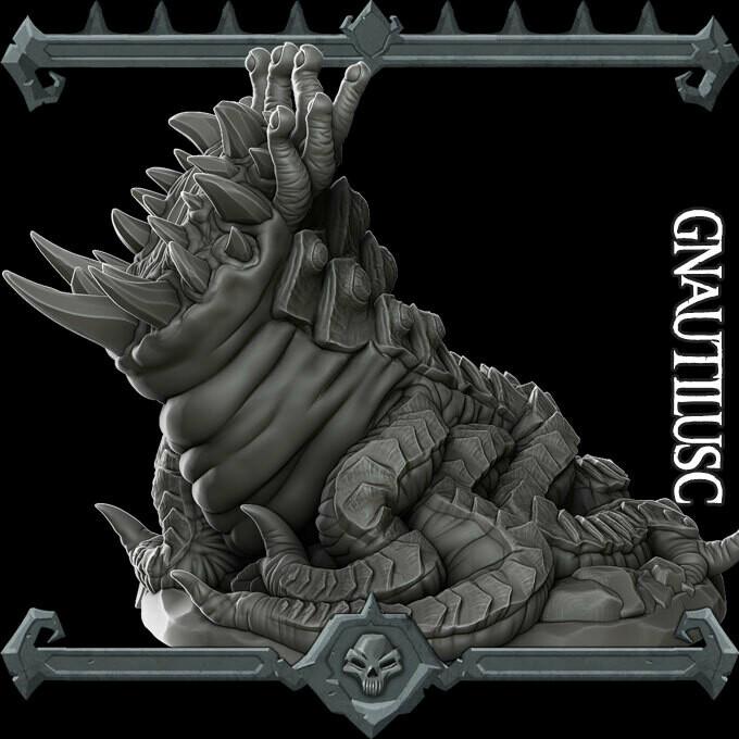 Gnautilusc