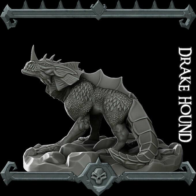 Drake Hound