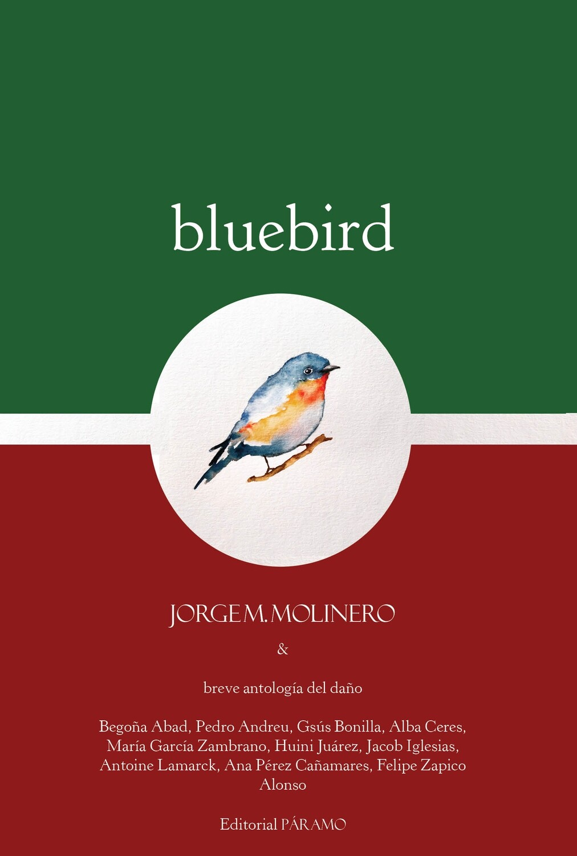 Bluebird, de Jorge M. Molinero