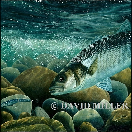 David Miller - 'Bass on the Plug' Limited Edition Print