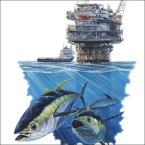 Steve Whitlock 'Gulf Oil Rig and Tuna Illustration'