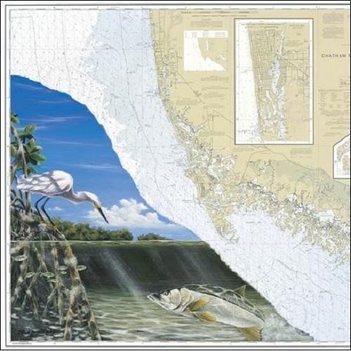 Steve Whitlock 'Everglades Snook Chart'