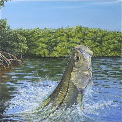 Steve Whitlock 'Linesider Cove' - Snook