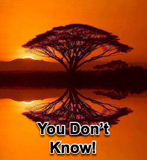 You Don't Know What You Don't Know - 8/20/14