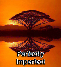 Perfectly Imperfect - 1/15/14
