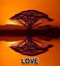 Love - 7/14/13