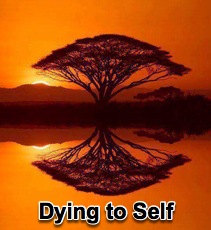 Dying to Self - 5/16/12