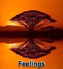 Feelings - 2/16/11