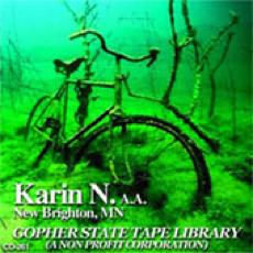 The Karin N. Story