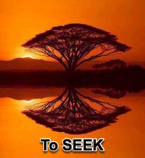 To Seek - 11/15/15