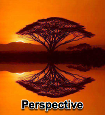 Perspective - 10/15/14