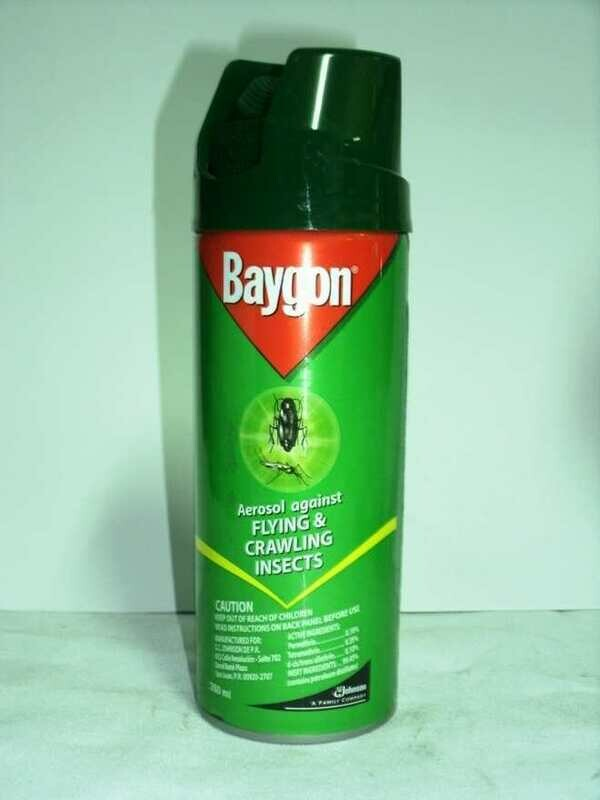 Baygon Aerosol (260ml)